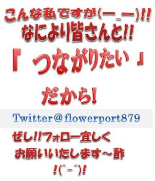 twittere38080e7b4b9e4bb8be38390e3838ae383bce38080flowerport879-e69cac